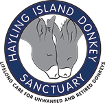 Hayling Island Donkeys